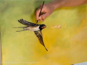 Vogel und Flugzeug malen - Details der Schwalbe