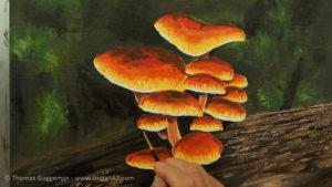 Pilze malen - Mit weiß werden die Schirmränder zum Leuchten gebracht