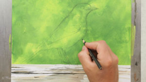 Vogel malen mit Acrylfarbe - Vogel vorzeichnen