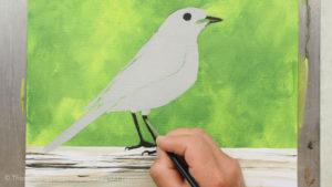 Vogel malen mit Acrylfarbe - Der Vogel wird grundiert