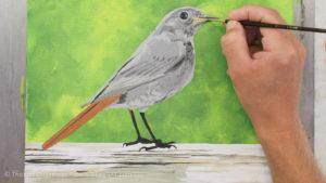 Vogel malen mit Acrylfarbe - Der rote Schwanz und weitere Details