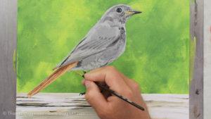 Vogel malen mit Acrylfarbe - Die Schwanzfedern bekommen weitere Details