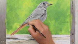 Vogel malen mit Acrylfarbe - Weitere Abstufungen ins Helle