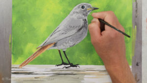 Vogel malen mit Acrylfarbe - Immer mehr Details werden sichtbar