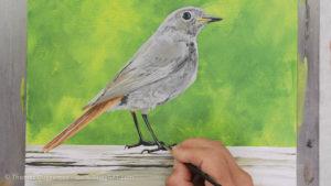 Vogel malen mit Acrylfarbe - Farbe im Gefieder