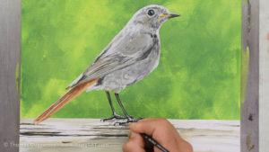 Vogel malen mit Acrylfarbe - Schatten der Beine
